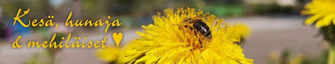 Suomalainen hunaja on kotimainen ekoteko ja loistava sokerin korvike